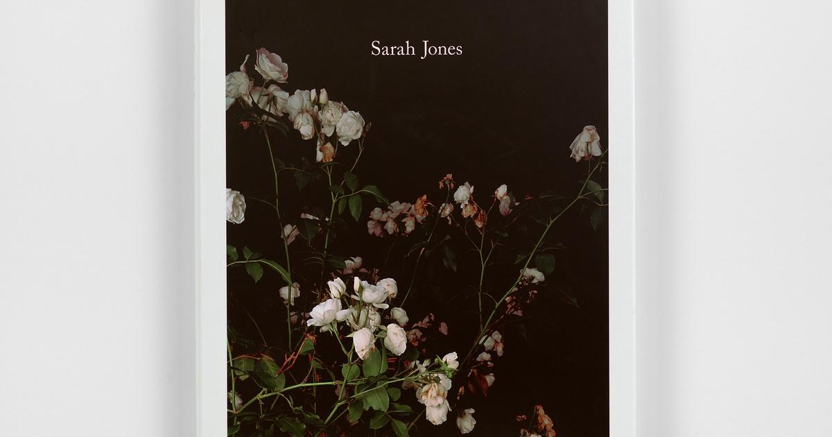 Sarah Jones   Anton Kern Gallery